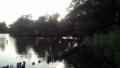 洗足池公園④