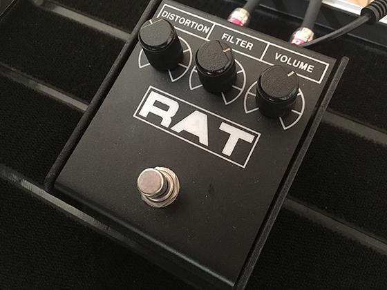 rat2の画像です