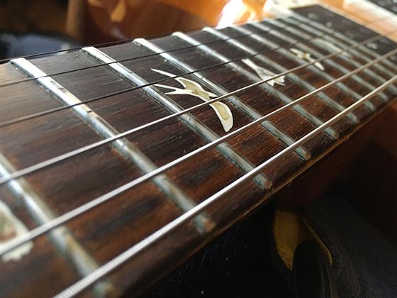 PRS22の弦の画像です。