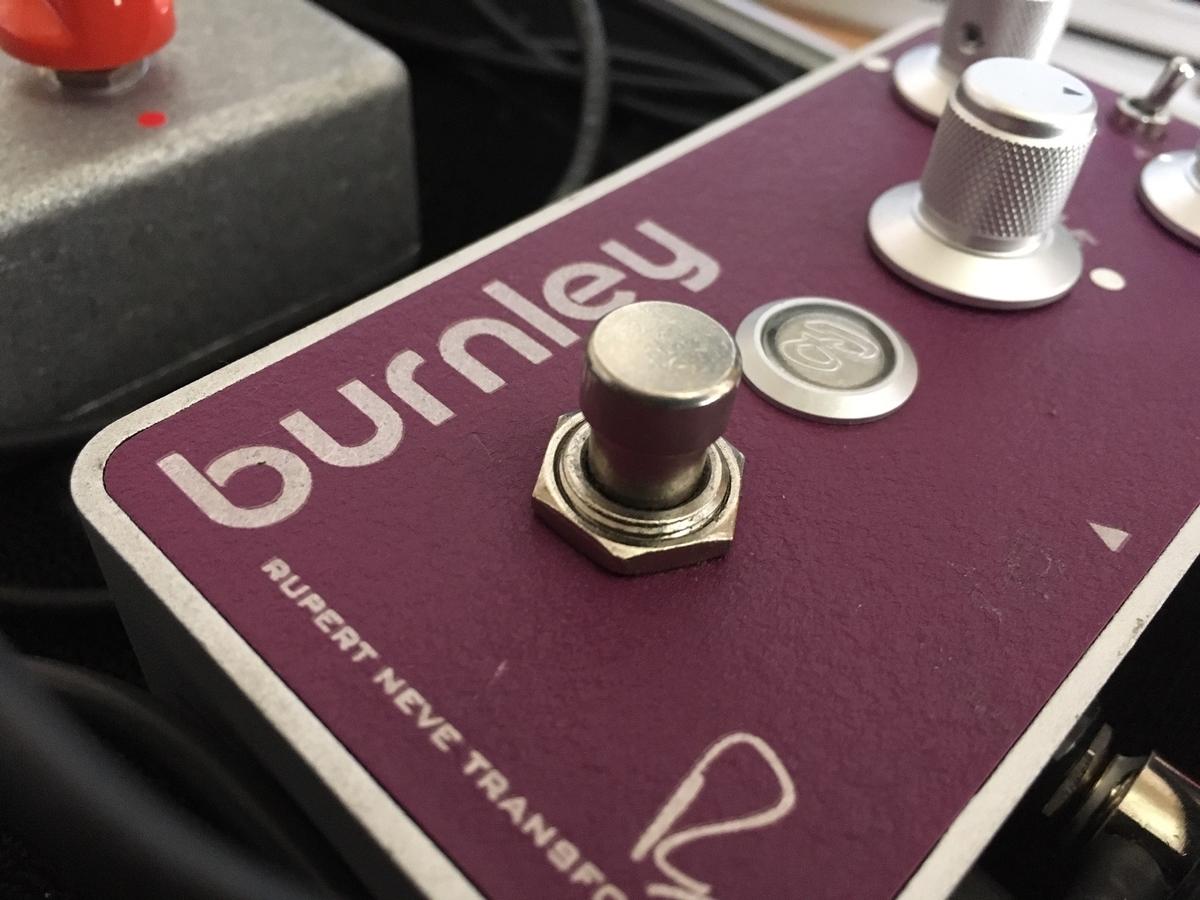 Bogner Burnleyのスイッチの画像です。