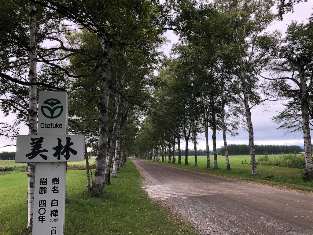 f:id:junichisuzaki:20200909191225j:image