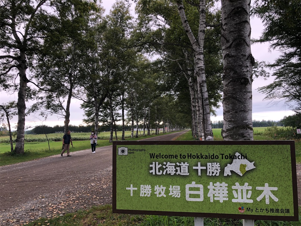 f:id:junichisuzaki:20200909191239j:image