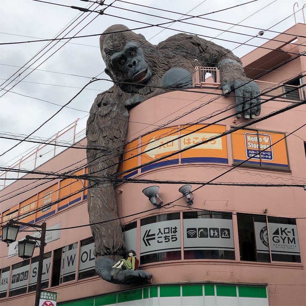 f:id:junichisuzaki:20201001150151j:image