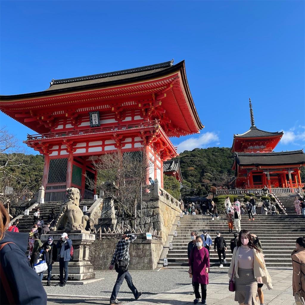 f:id:junichisuzaki:20201122084130j:image