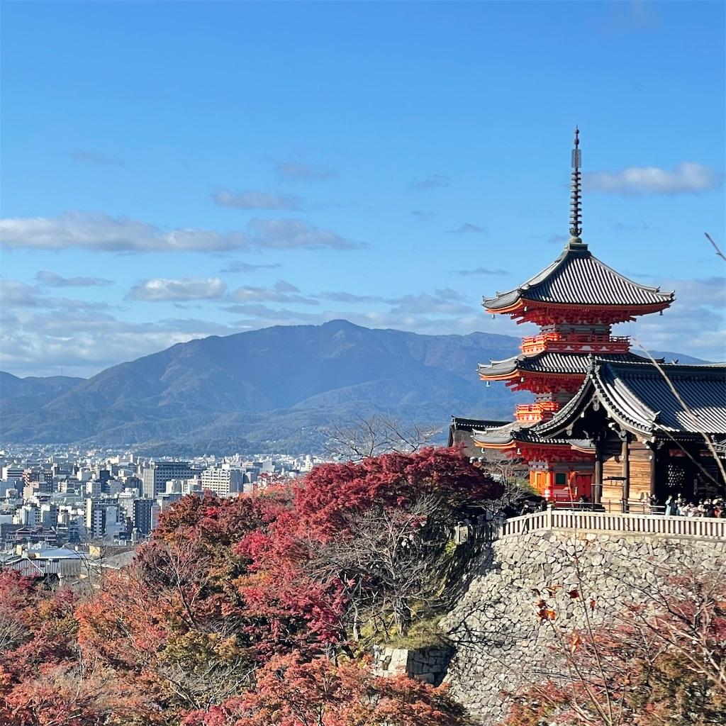 f:id:junichisuzaki:20201122084135j:image