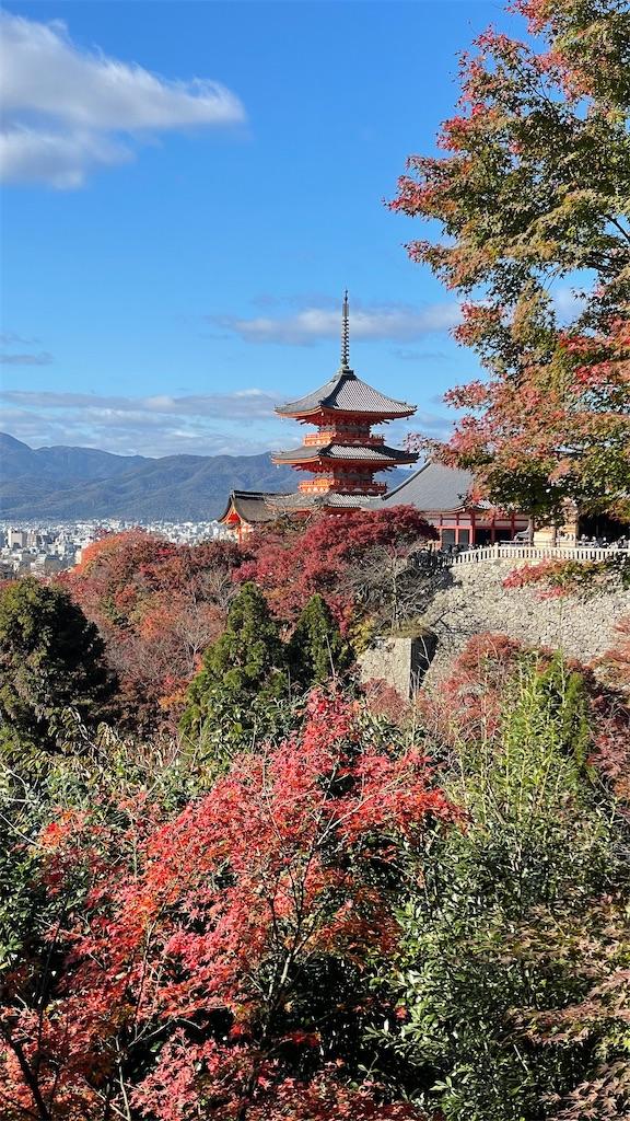 f:id:junichisuzaki:20201122084151j:image