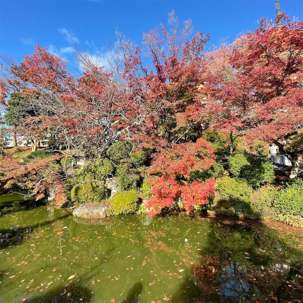 f:id:junichisuzaki:20201122084205j:image
