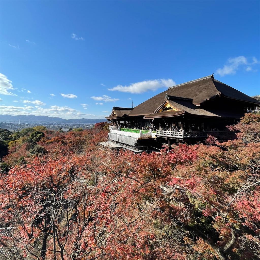 f:id:junichisuzaki:20201122084233j:image