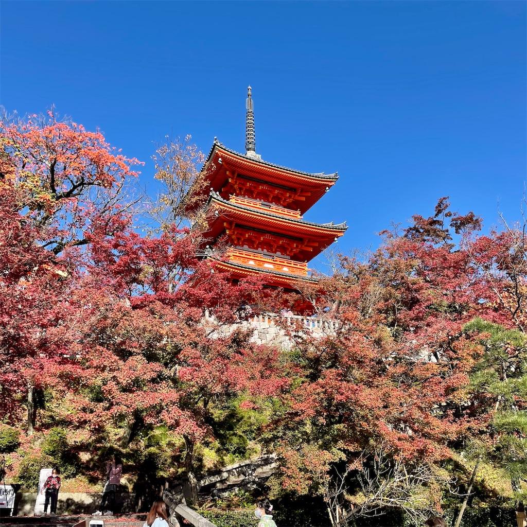 f:id:junichisuzaki:20201122084312j:image