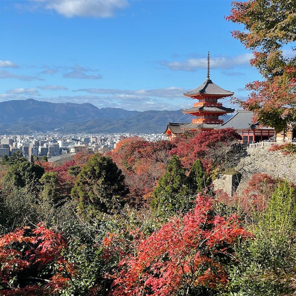 f:id:junichisuzaki:20201122084317j:image
