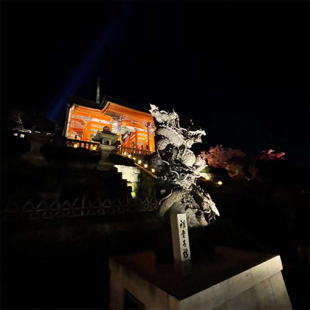 f:id:junichisuzaki:20201122084452j:image