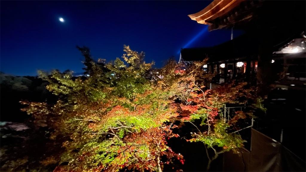 f:id:junichisuzaki:20201122084501j:image