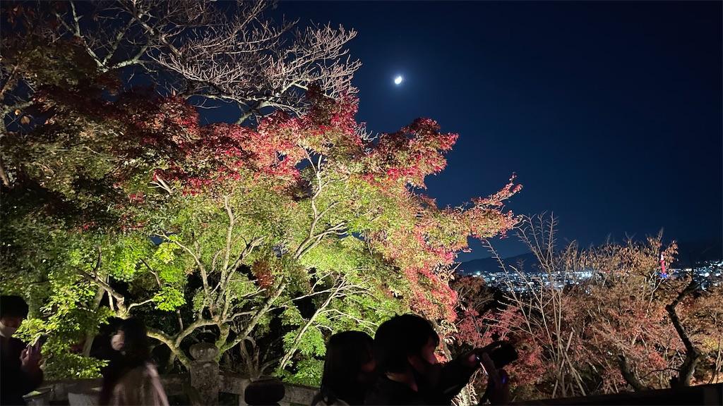 f:id:junichisuzaki:20201122084516j:image