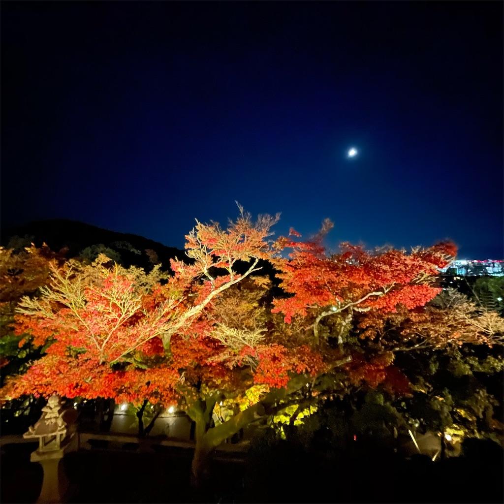 f:id:junichisuzaki:20201122084532j:image