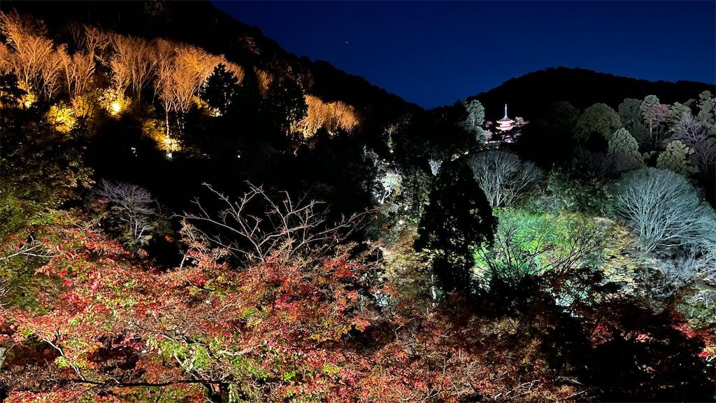 f:id:junichisuzaki:20201122084541j:image