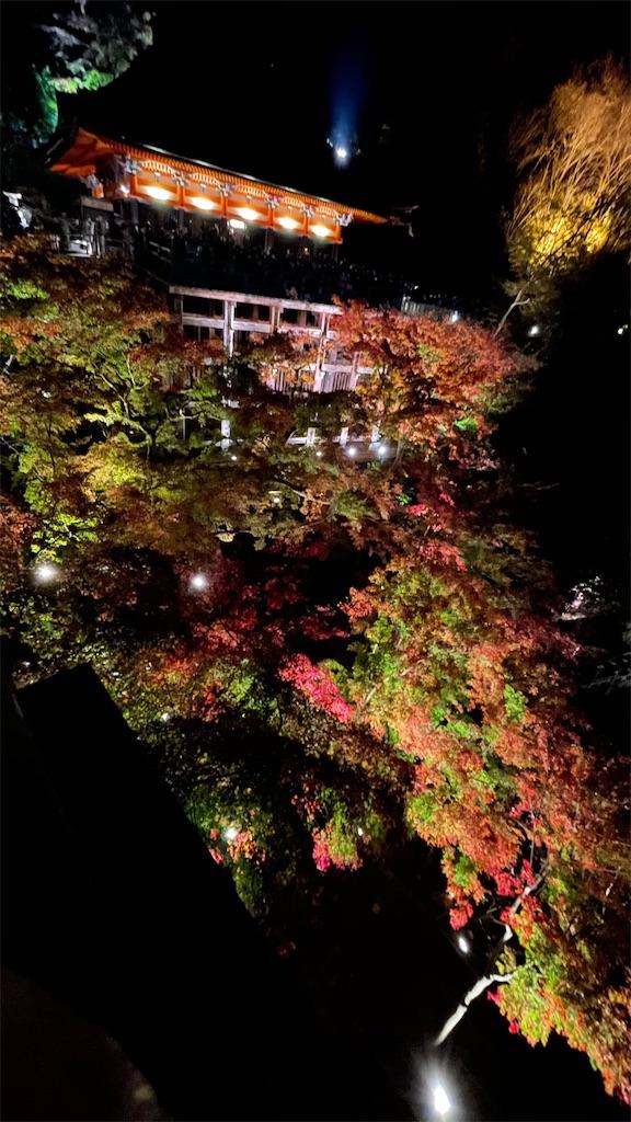 f:id:junichisuzaki:20201122084549j:image