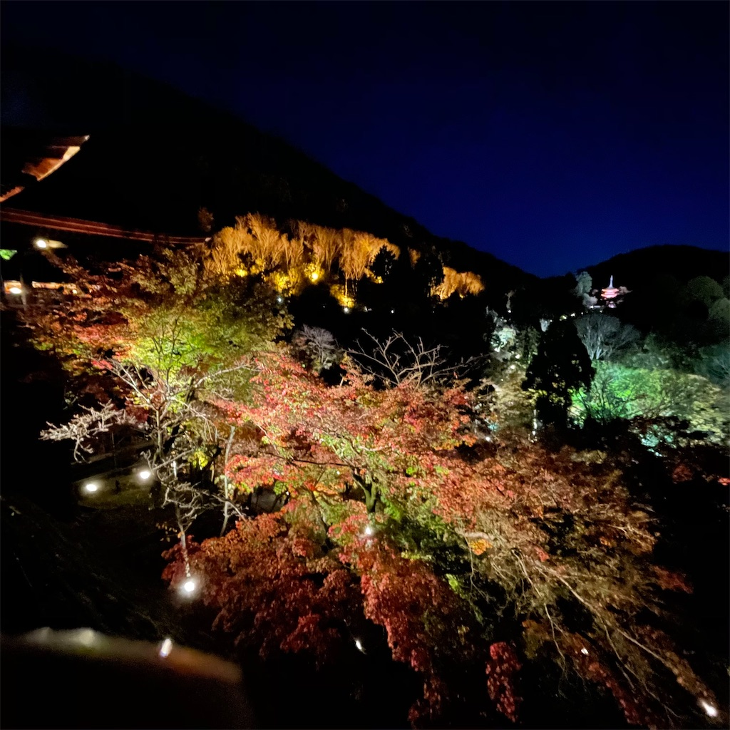 f:id:junichisuzaki:20201122084607j:image