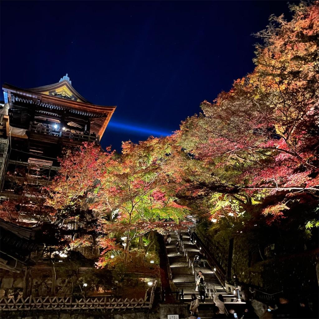 f:id:junichisuzaki:20201122084755j:image