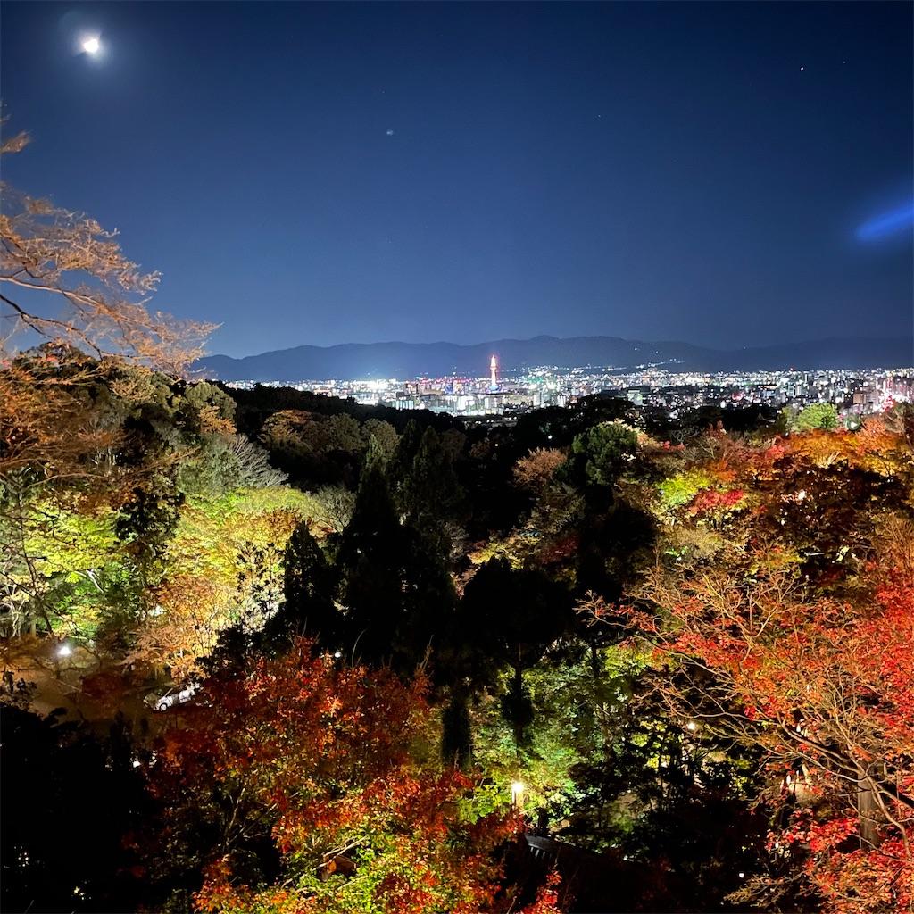 f:id:junichisuzaki:20201122084808j:image