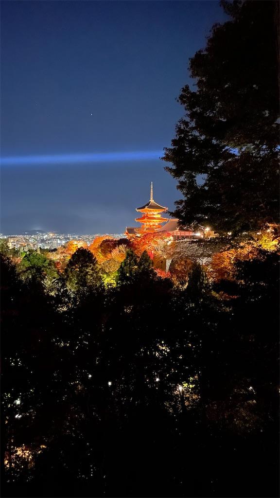f:id:junichisuzaki:20201122084825j:image