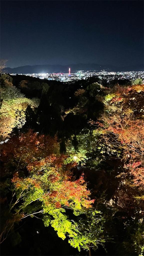 f:id:junichisuzaki:20201122084835j:image