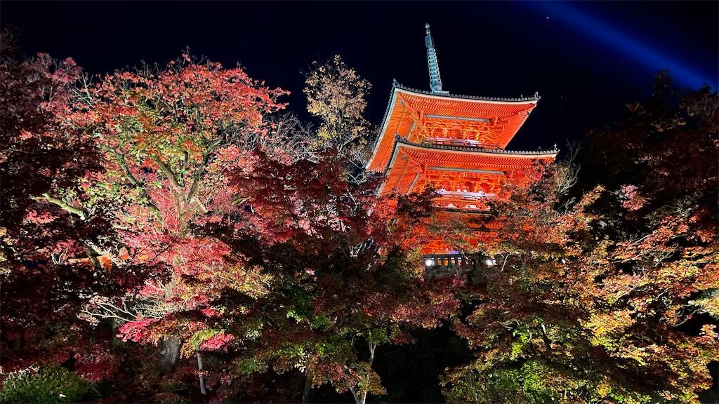 f:id:junichisuzaki:20201122084839j:image