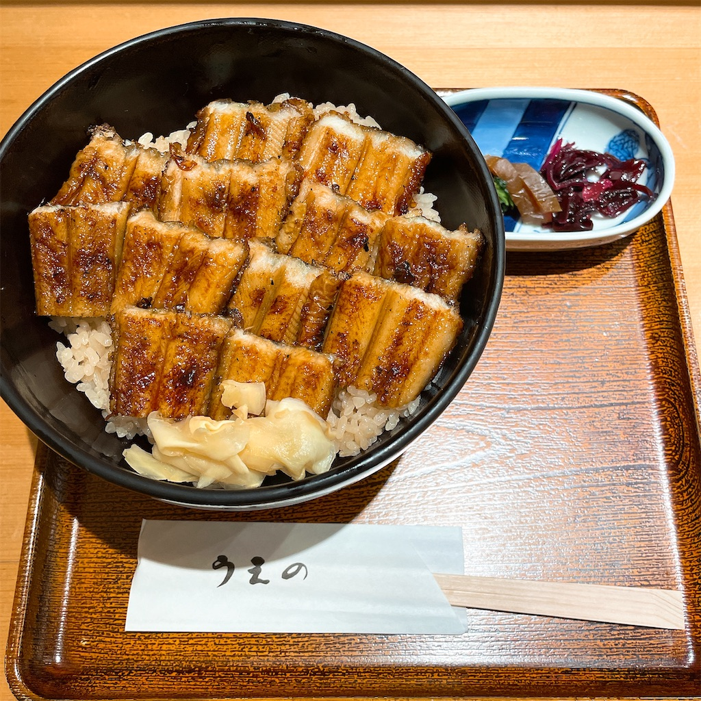f:id:junichisuzaki:20201206124653j:image