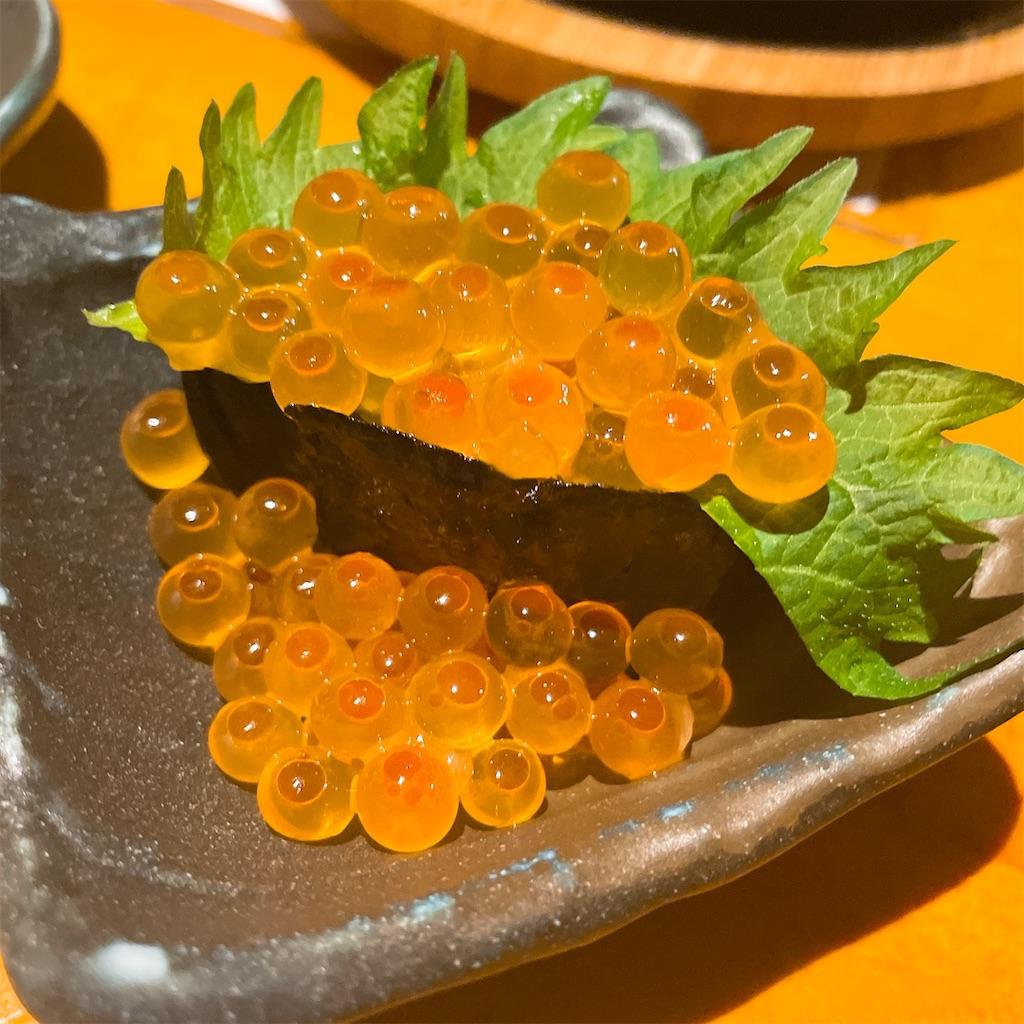 f:id:junichisuzaki:20201209192218j:image