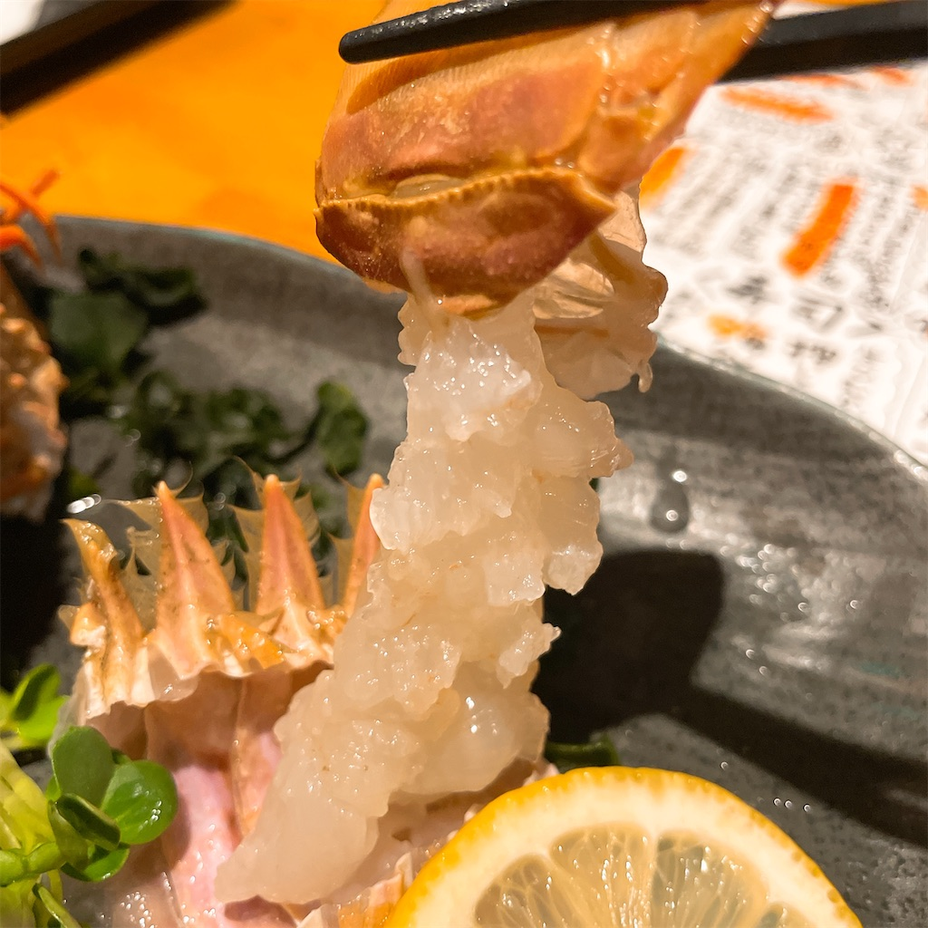 f:id:junichisuzaki:20201209192524j:image
