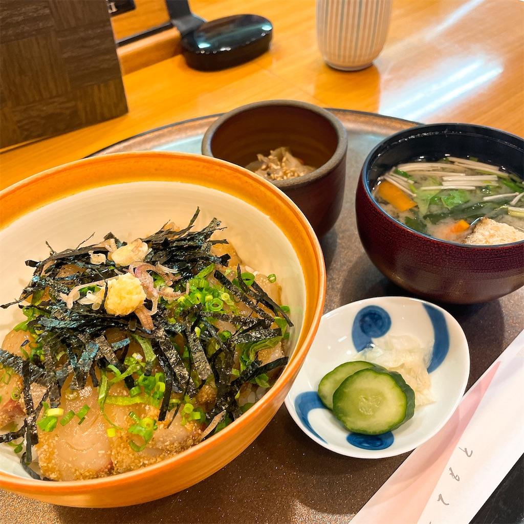 f:id:junichisuzaki:20201212152428j:image