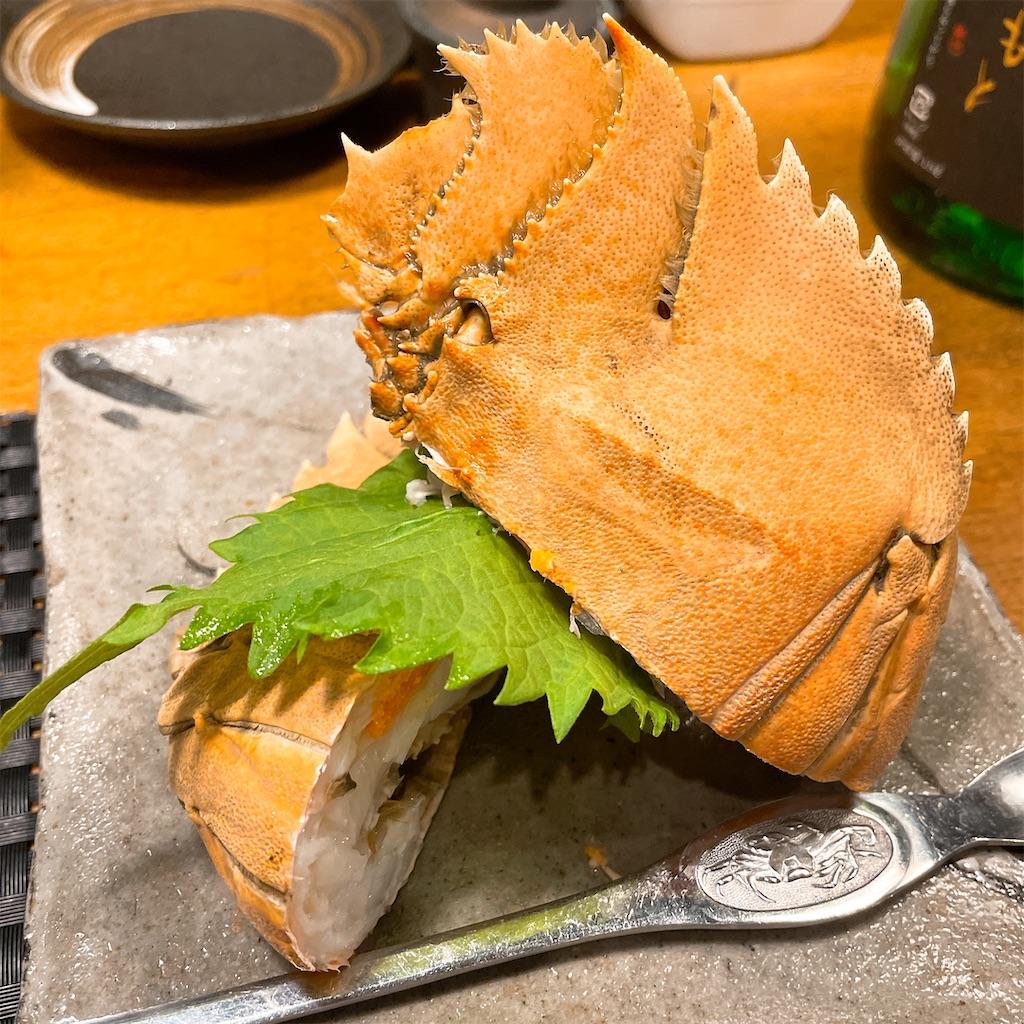 f:id:junichisuzaki:20201213102851j:image