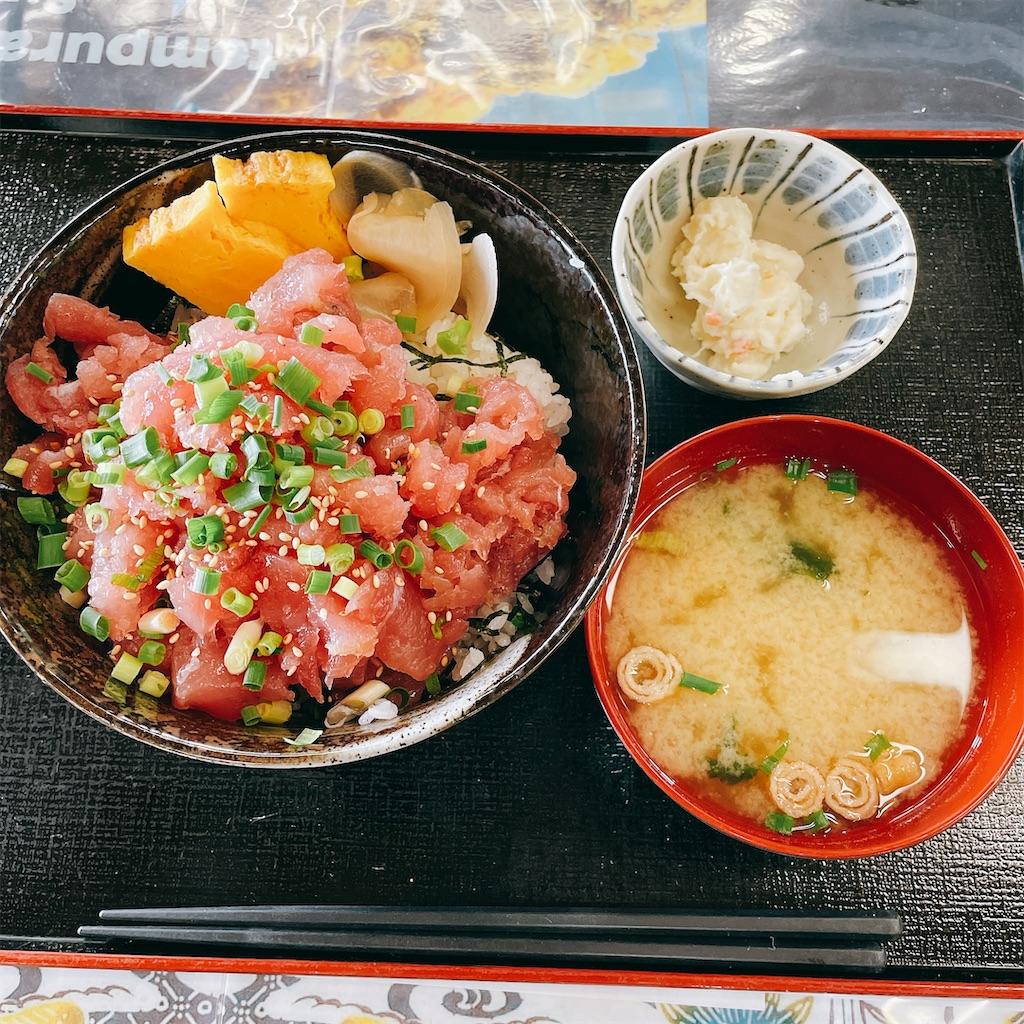 f:id:junichisuzaki:20210121162830j:image