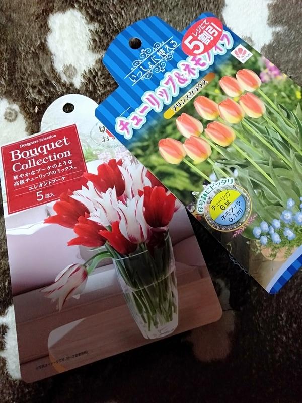 庭に植えました。春を楽しみに。。