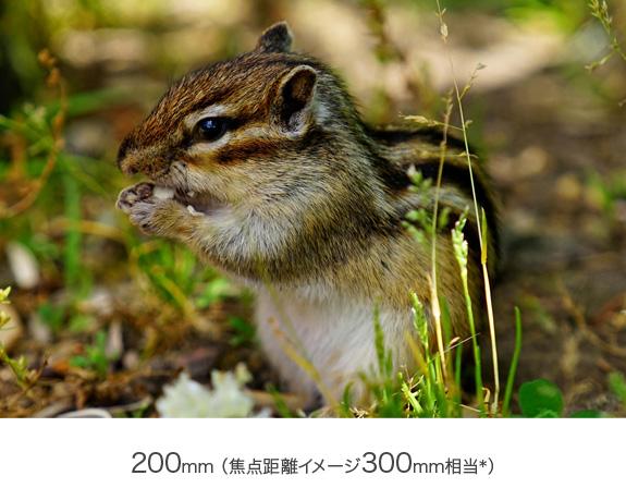f:id:junpeiblog:20190908024957j:plain