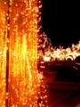 [風景][F-10D][夜景][徳島][イルミネーション]「池田 冬のオブジェ」at 池田・へそっこ公園