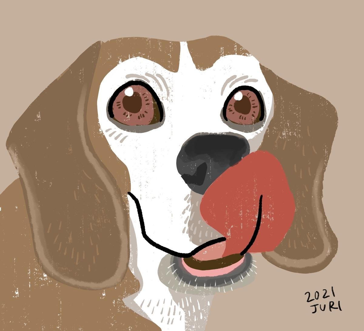 ビーグル犬のデジタル画似顔絵