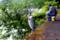 京都新聞写真コンテスト 釣師と鷺師