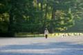 京都御苑の朝