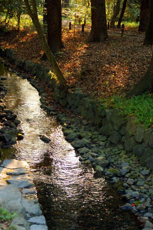 個別「下鴨神社御手洗川」の写真...