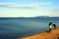 琵琶湖早春譜