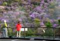 「京都新聞写真コンテスト美しい時の流」