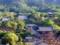新緑に映える仁和寺