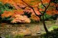 京都御苑内