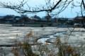 霜が降りて冬景色