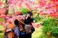 京都新聞写真コンテスト 紅に撮る撮る
