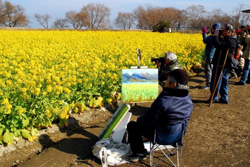 京都新聞写真コンテスト 見る!描く!撮る!