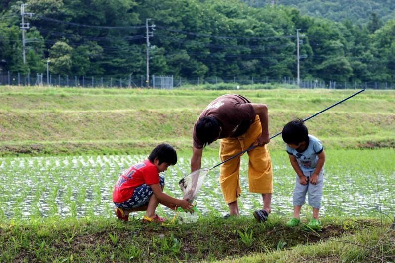 京都新聞写真コンテスト カエル獲れたの