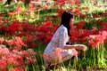 今津:桂浜の彼岸花