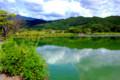 京都新聞写真コンテスト 緑水鏡
