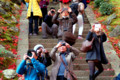 京都新聞写真コンテスト 背後が気になる?